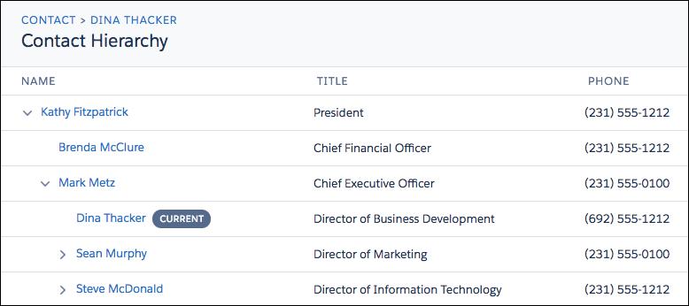 salesforce contact hierarchy