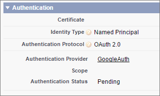 Named credential authentiation settings with OAuth options